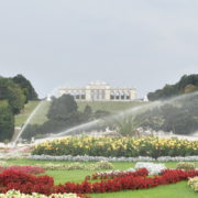 Amazing-Flower-Water-System-Schoenbrunn-Palace-at-Vienna-Austria-4K-25fps-Video-Footage_002 National Footage