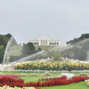 vj video background Amazing-Flower-Water-System-Schoenbrunn-Palace-at-Vienna-Austria-4K-25fps-Video-Footage_003
