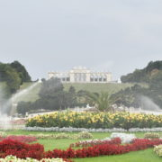 Amazing-Flower-Water-System-Schoenbrunn-Palace-at-Vienna-Austria-4K-25fps-Video-Footage_004 National Footage