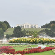 Amazing-Flower-Water-System-Schoenbrunn-Palace-at-Vienna-Austria-4K-25fps-Video-Footage_005 National Footage