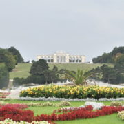 Amazing-Flower-Water-System-Schoenbrunn-Palace-at-Vienna-Austria-4K-25fps-Video-Footage_006 National Footage