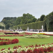 Summer-Day-Beautiful-Giant-Garden-Schoenbrunn-Palace-at-Vienna-Austria-4K-25fps-Video-Footage_008 National Footage