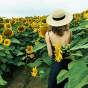 Blonde-Girl-goes-slow-motion-to-the-Sun-Flower-Field_005 National Footage
