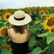 Blonde-Girl-goes-slow-motion-to-the-Sun-Flower-Field_007 National Footage