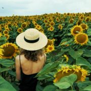 Blonde-Girl-goes-slow-motion-to-the-Sun-Flower-Field_008 National Footage