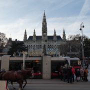 Timelapse-in-the-center-of-Vienna-Rathaus-Travel-people-tourists_007 National Footage
